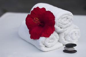タオルと赤い花